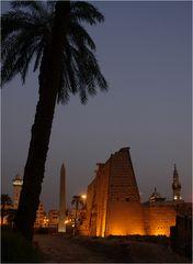 Palme und Obelisk
