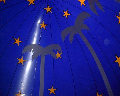Palmen der Nacht