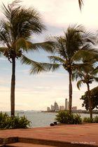 Palmen mit Skyline