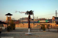 Palmen und Kiew-Express