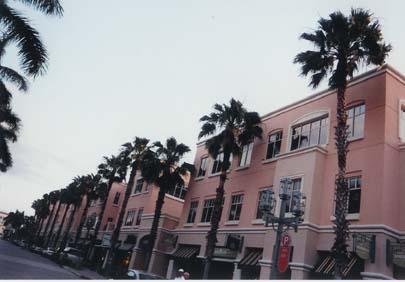 palmenallee