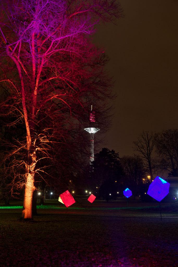 Palmengarten Frankfurt - Winterlicht 17