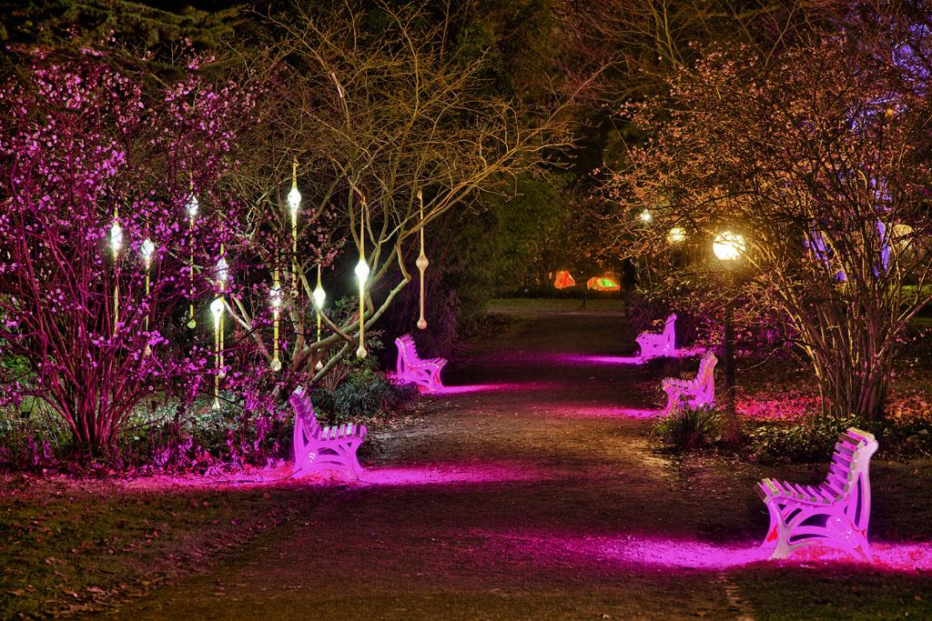 Palmengarten Frankfurt - Winterlicht 18