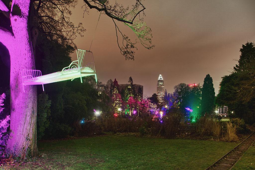 Palmengarten Frankfurt - Winterlicht 7