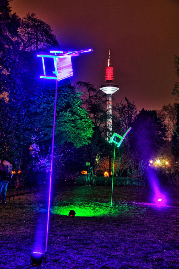 Palmengarten Frankfurt - Winterlicht 9