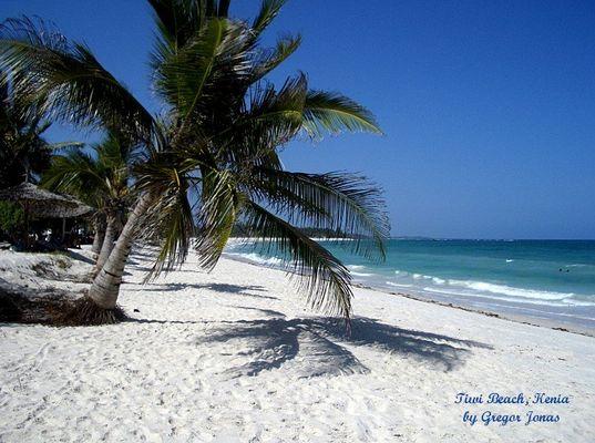 Palmengesäumter Traumstrand