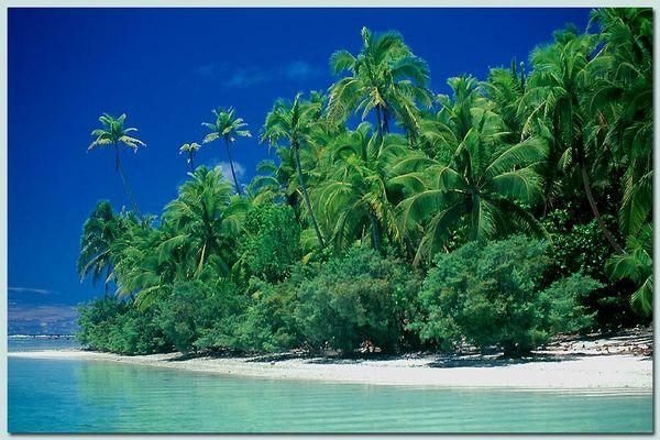 Palmenstrand auf Aitutaki