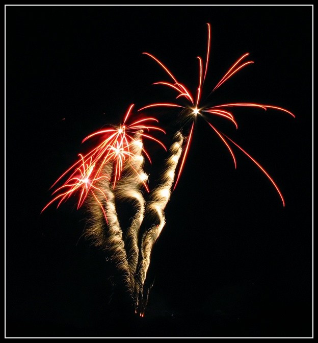 Palmier d'artifice