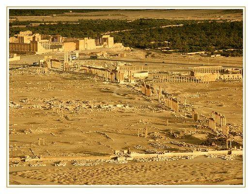 """""""Palmyra"""""""