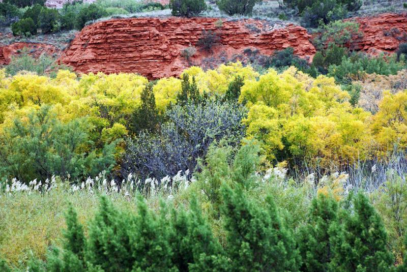 Palo Duro Canyon Autmn