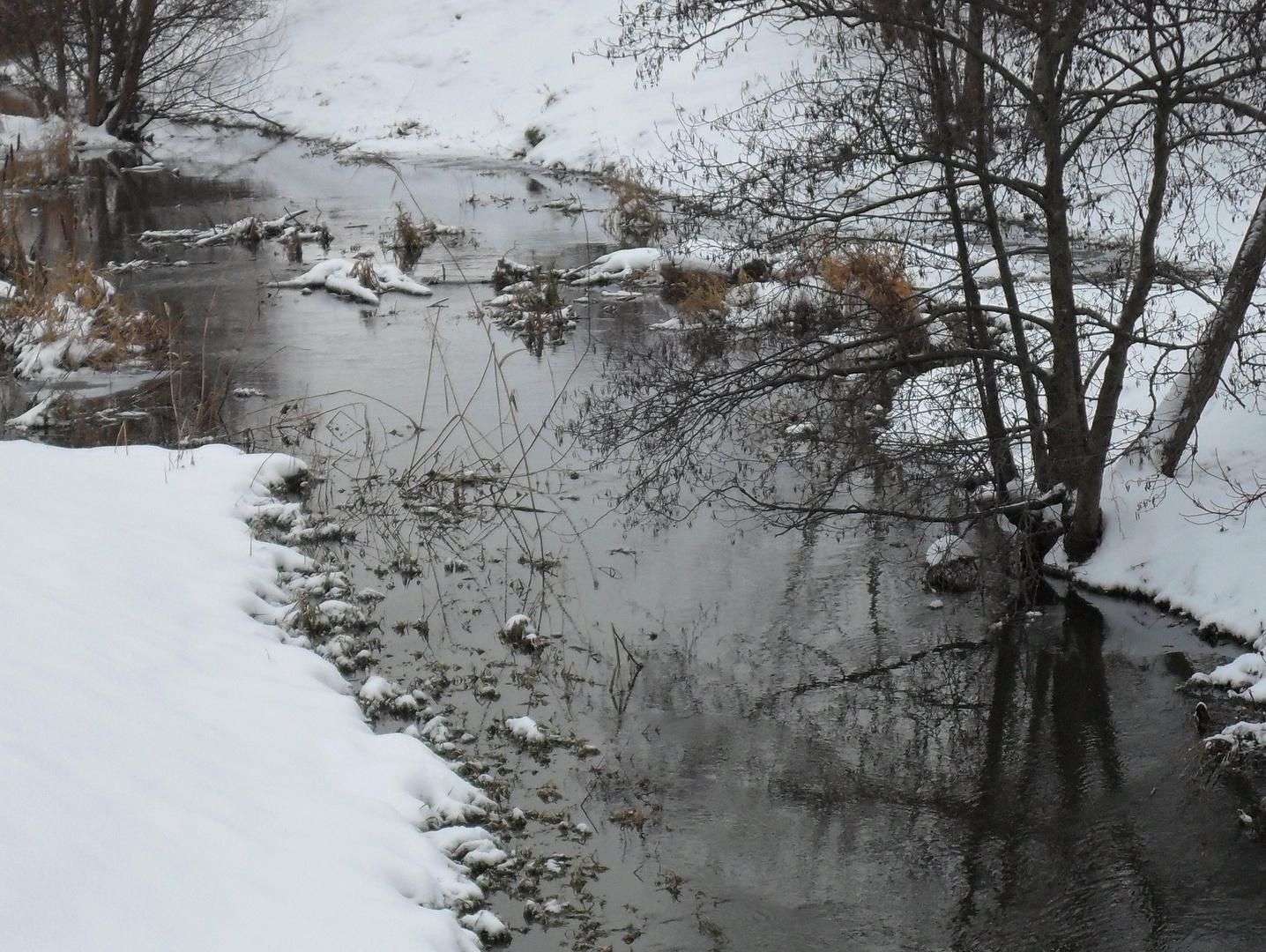 Panke im Winter