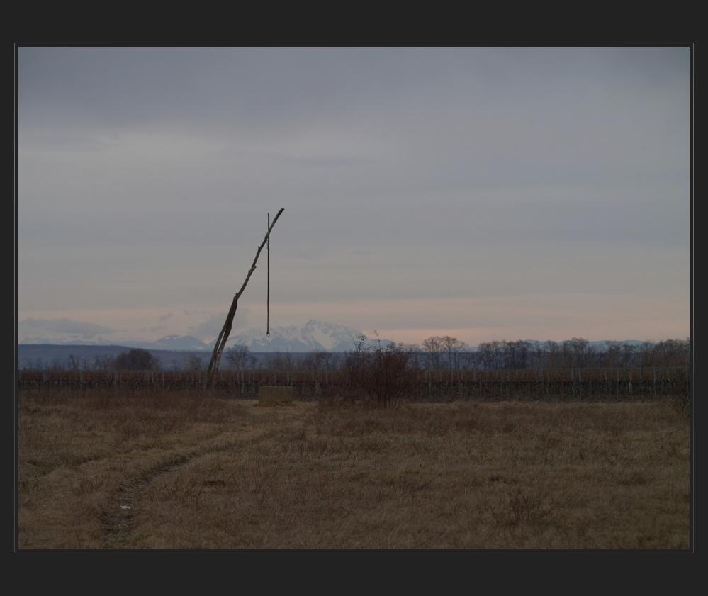 pannonien grüsst die alpen