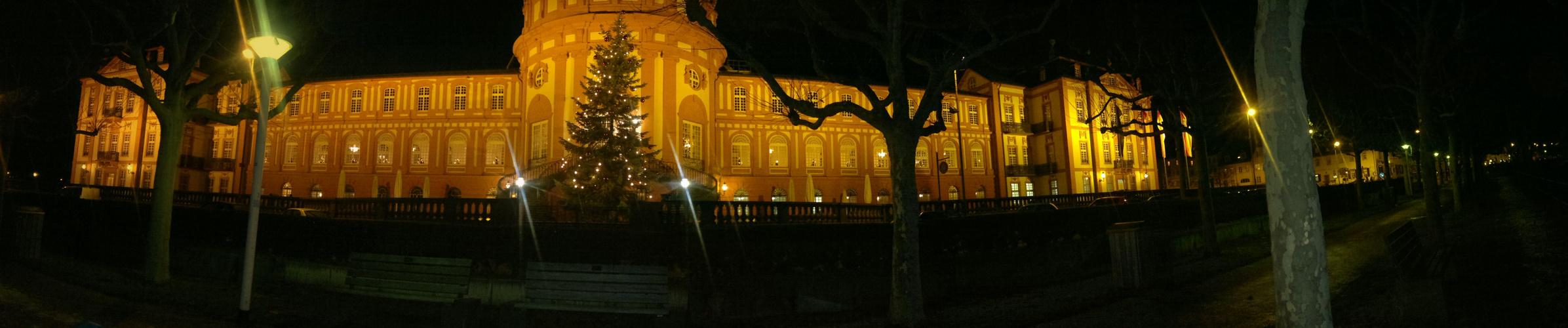 Panorama Bild vom biebricher Schloss