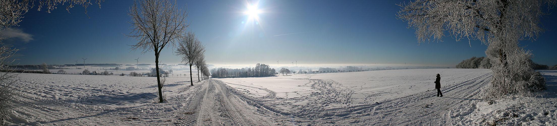 Panorama Coesfelder Berg
