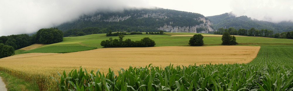 Panorama Jura-Südfuss