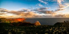 Panorama mit Albatross