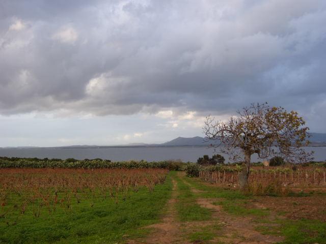 Panorama sardo 2