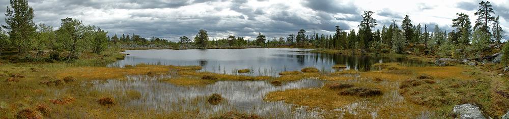 Panorama Sumpflandschaft im Rogengebiet - Südkungsleden