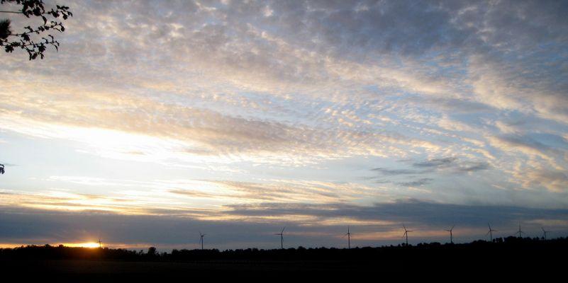panorama sur les éoliennes