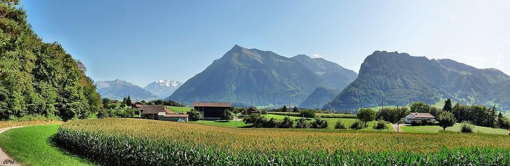 Panorama vom Niesen und dem Jungfraumassiv im Hintergrund
