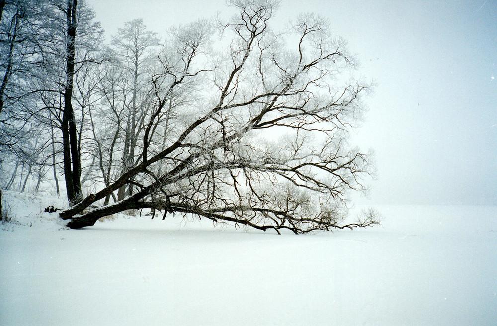 panta rhei 1 im Winter