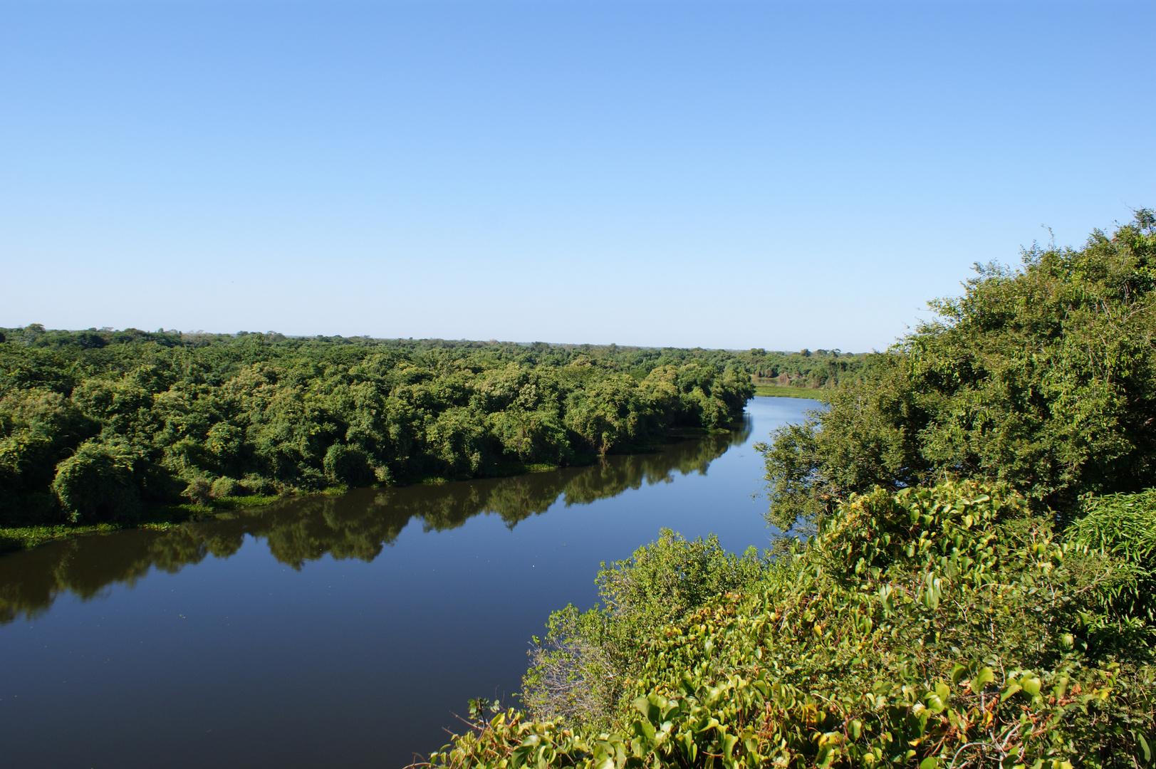 Pantanal Rio Cuiabá