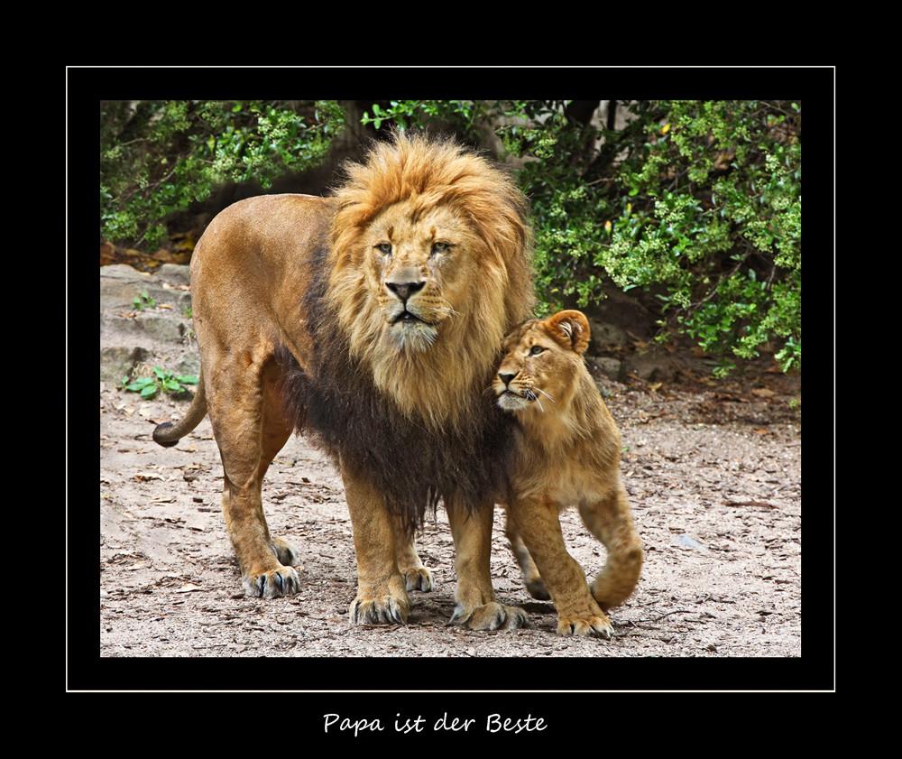Papa ist der Beste