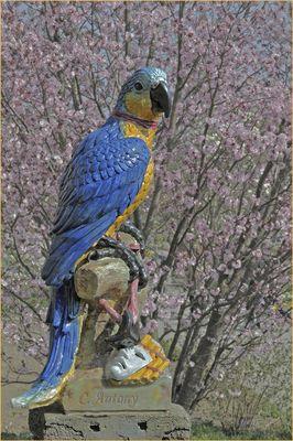 Papagei - Majolika-Figuren