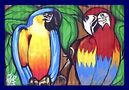 Papageienfreundschaft by BineGrimm