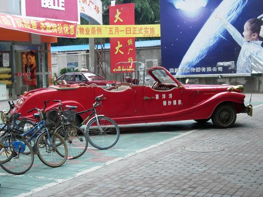 Papamobile chinoise