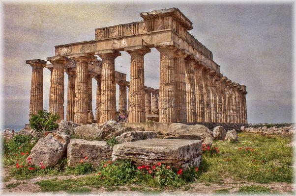 Papaveri e colonne
