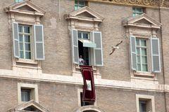 Papst Audienz