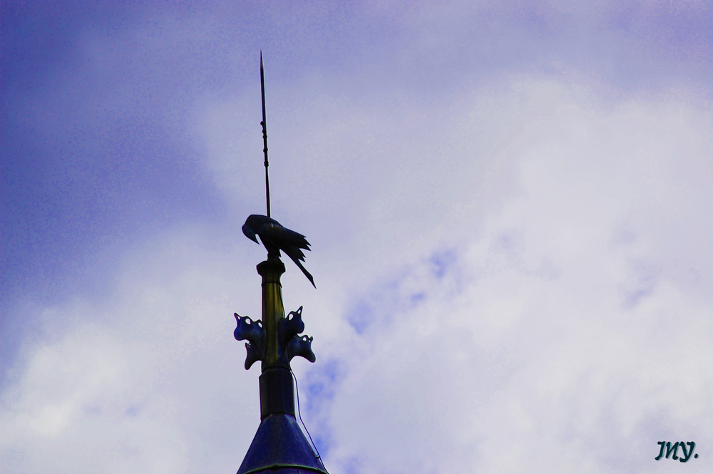 """""""Par la flèche transpercé"""""""
