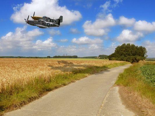 Par la route ou par les airs ?