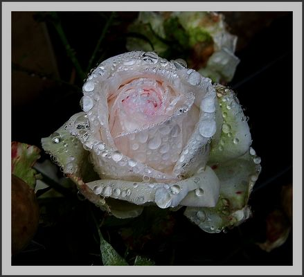 par temps de pluie