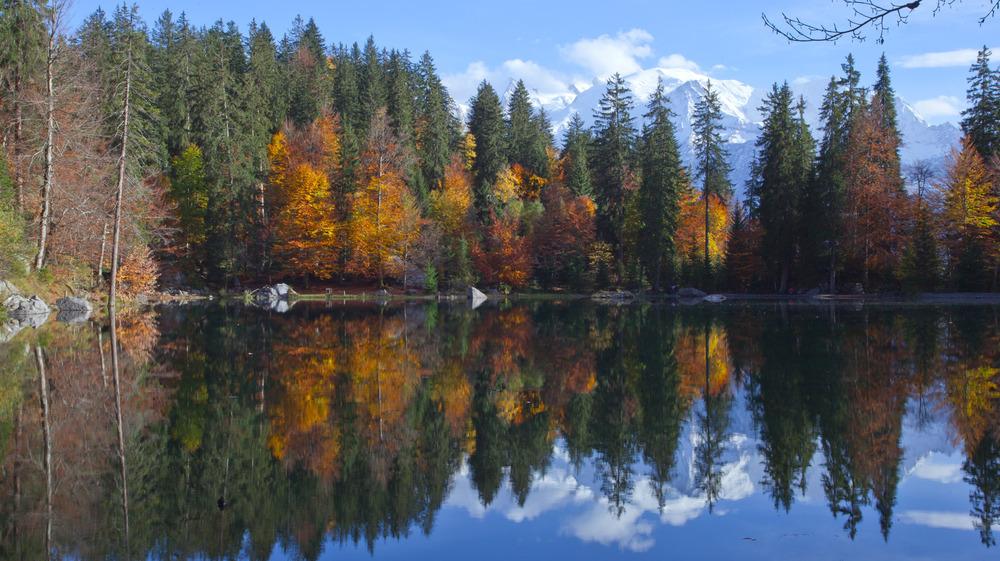 Par une belle journée d'automne