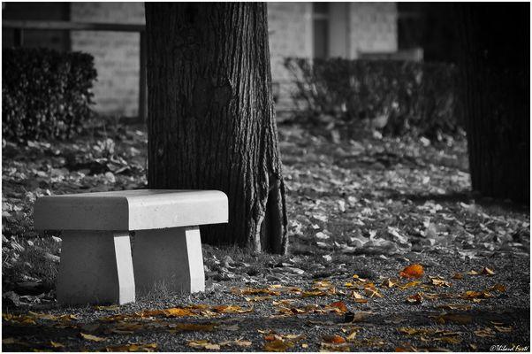 Par une fin d'automne...