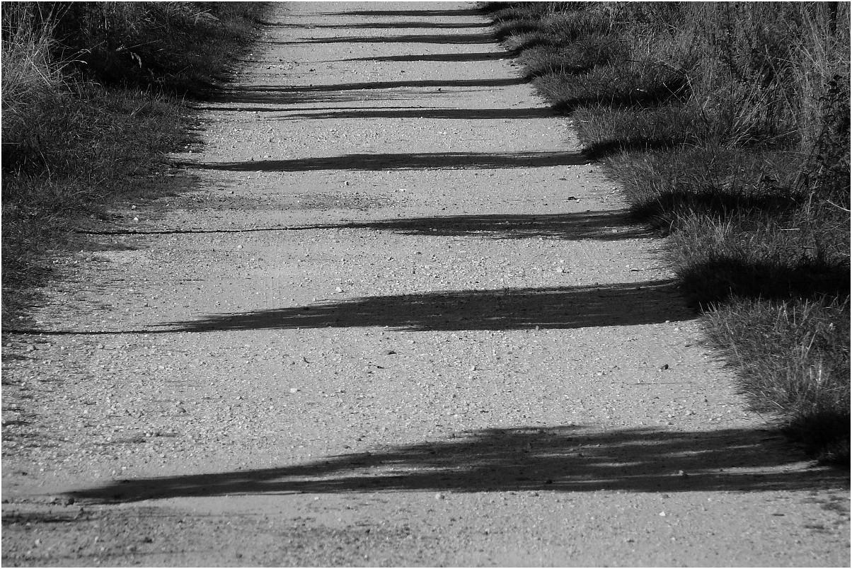 Parade der Schatten
