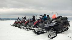 Parade der Schneemonster
