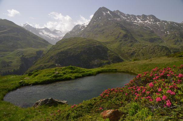 Paradies - dein Name ist Tirol