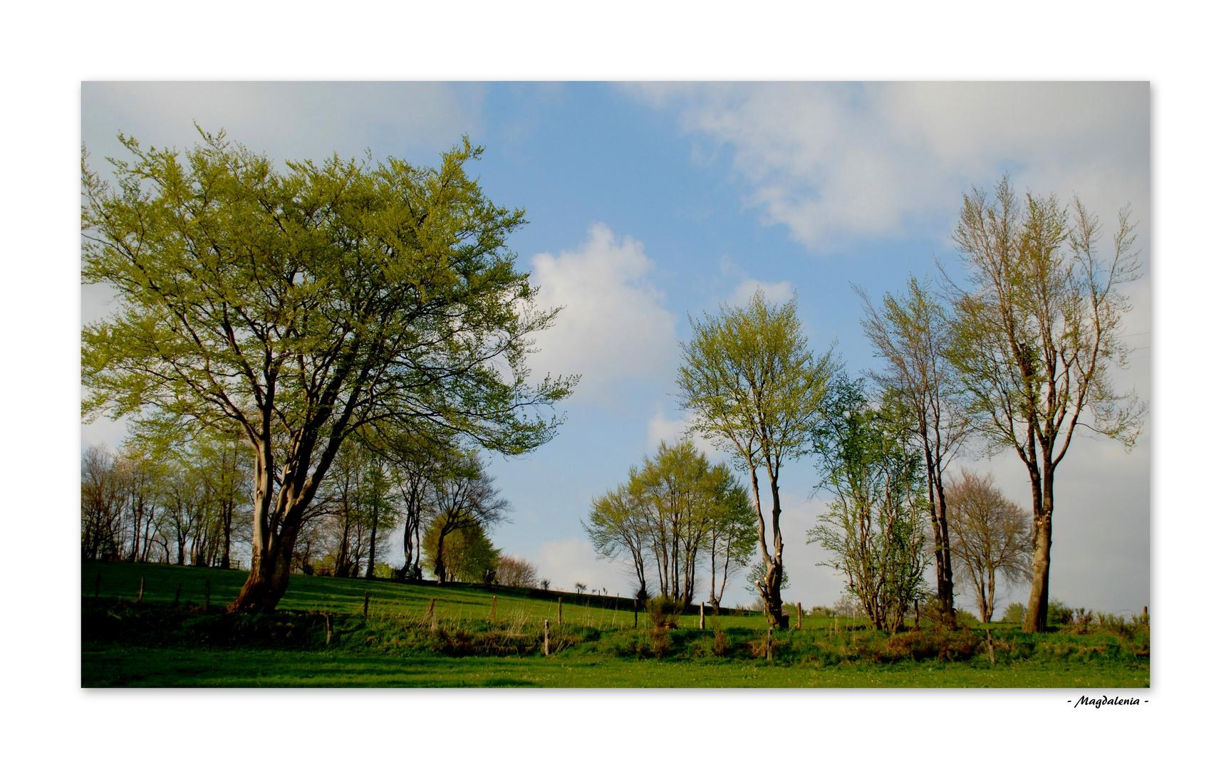 Paradis champêtre