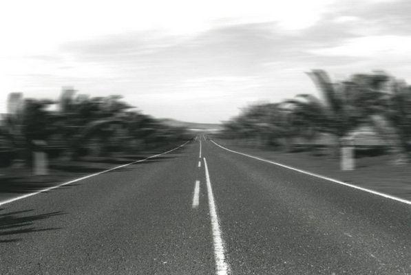::paradise road::