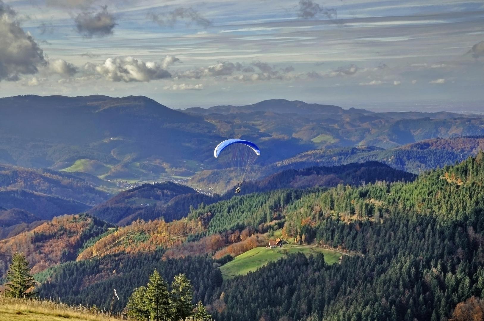 Paraglider im Renchtal