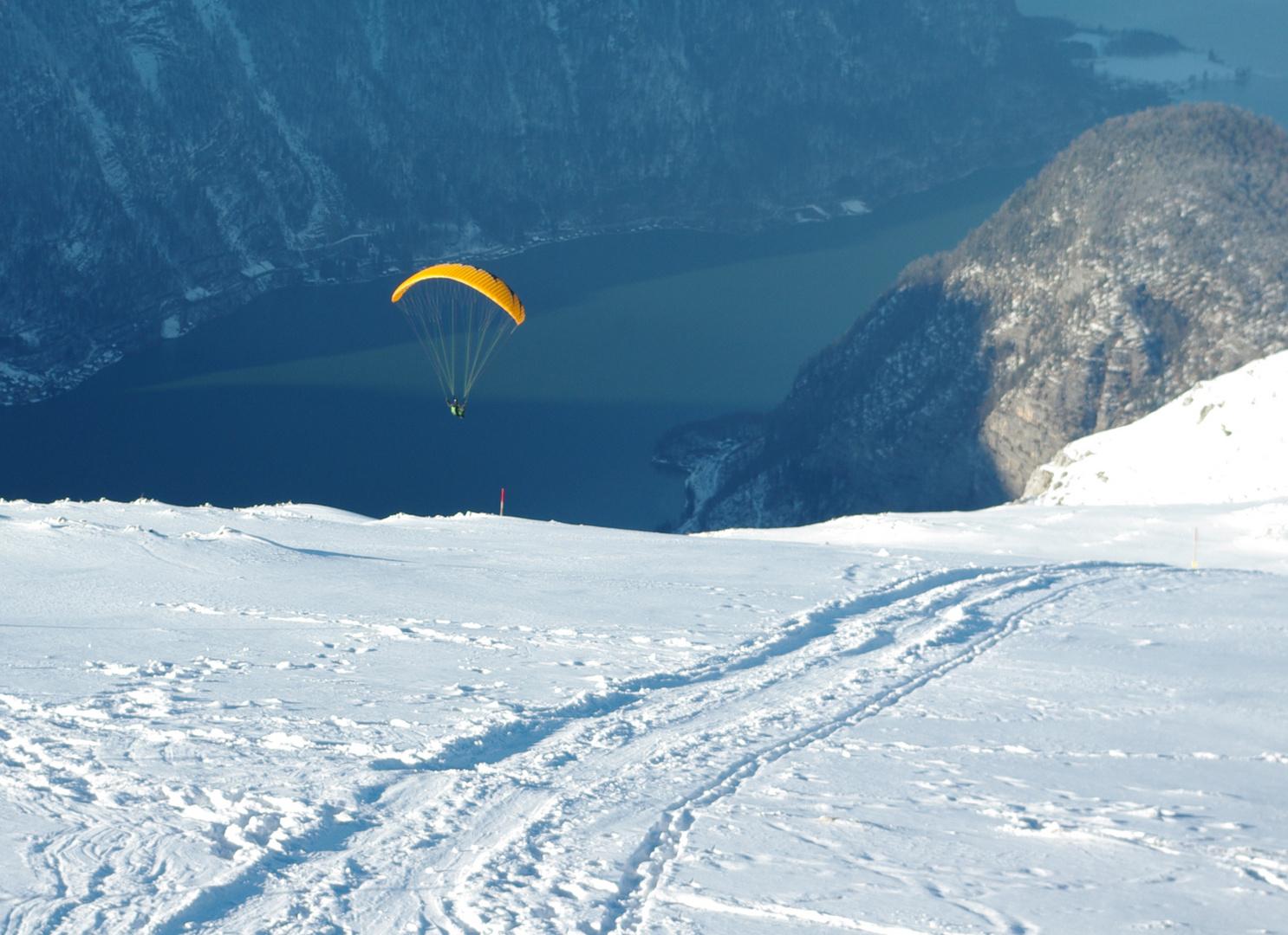 Paraglider schwebt ein