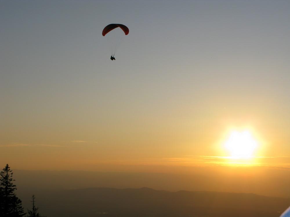 Paragliders am Kandel