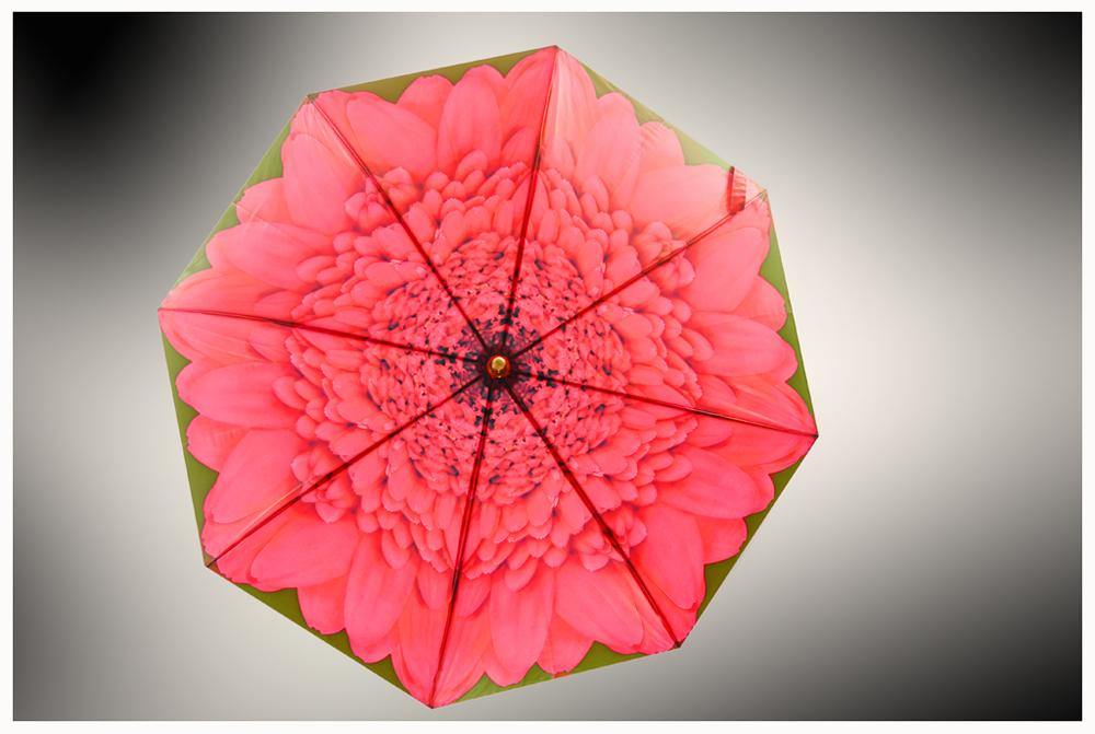 Paraguas zenital 1