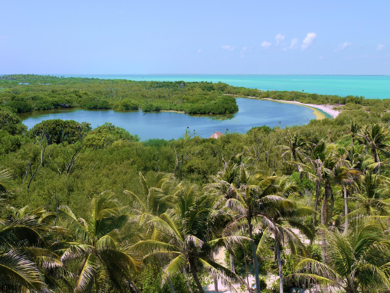 Paraíso Tropical en una Isla Virgen