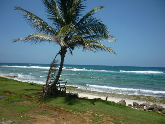 Paraíso y Tranquilidad- San Andrés Islas- Colombia