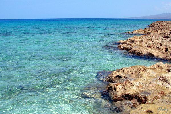 Paraisos en Cuba V