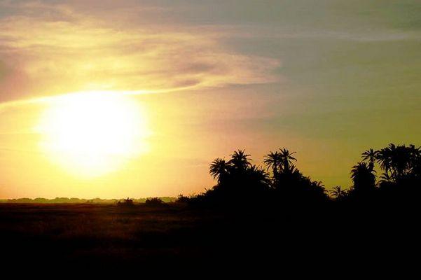Parc Amboseli, Kenya